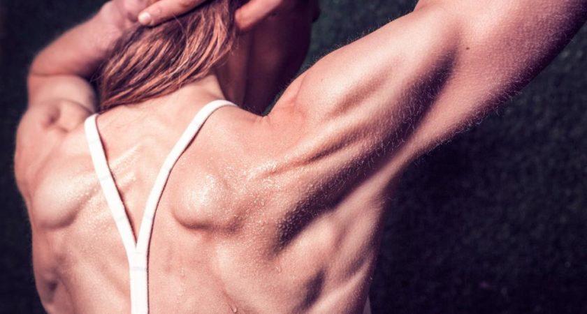 Klata, plecy, barki – czyli 4 największe mity o siłowni